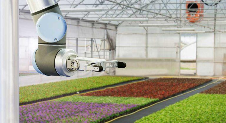 OAFRI Commercialization Stream automated machine inside greenhouse 2